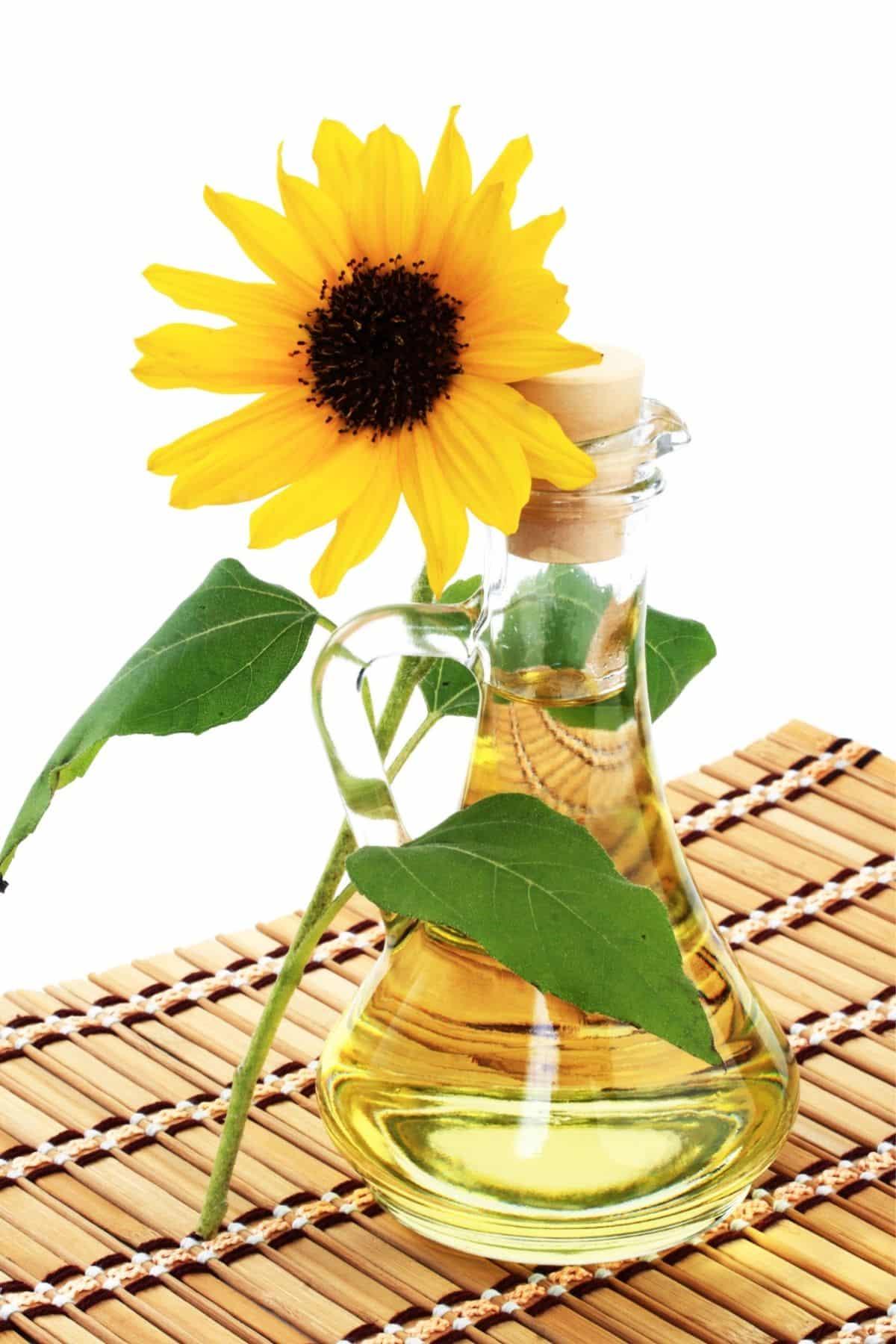 jar of sunflower oil with a fresh sunflower