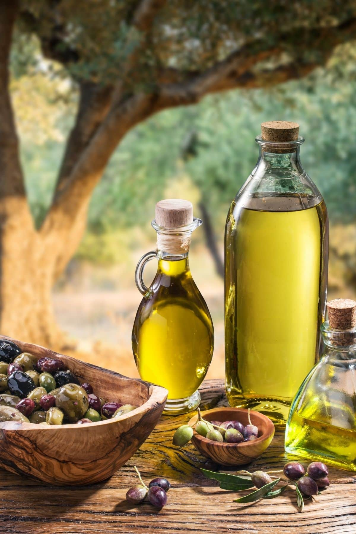jars of olive oil on a picnic table with fresh olives