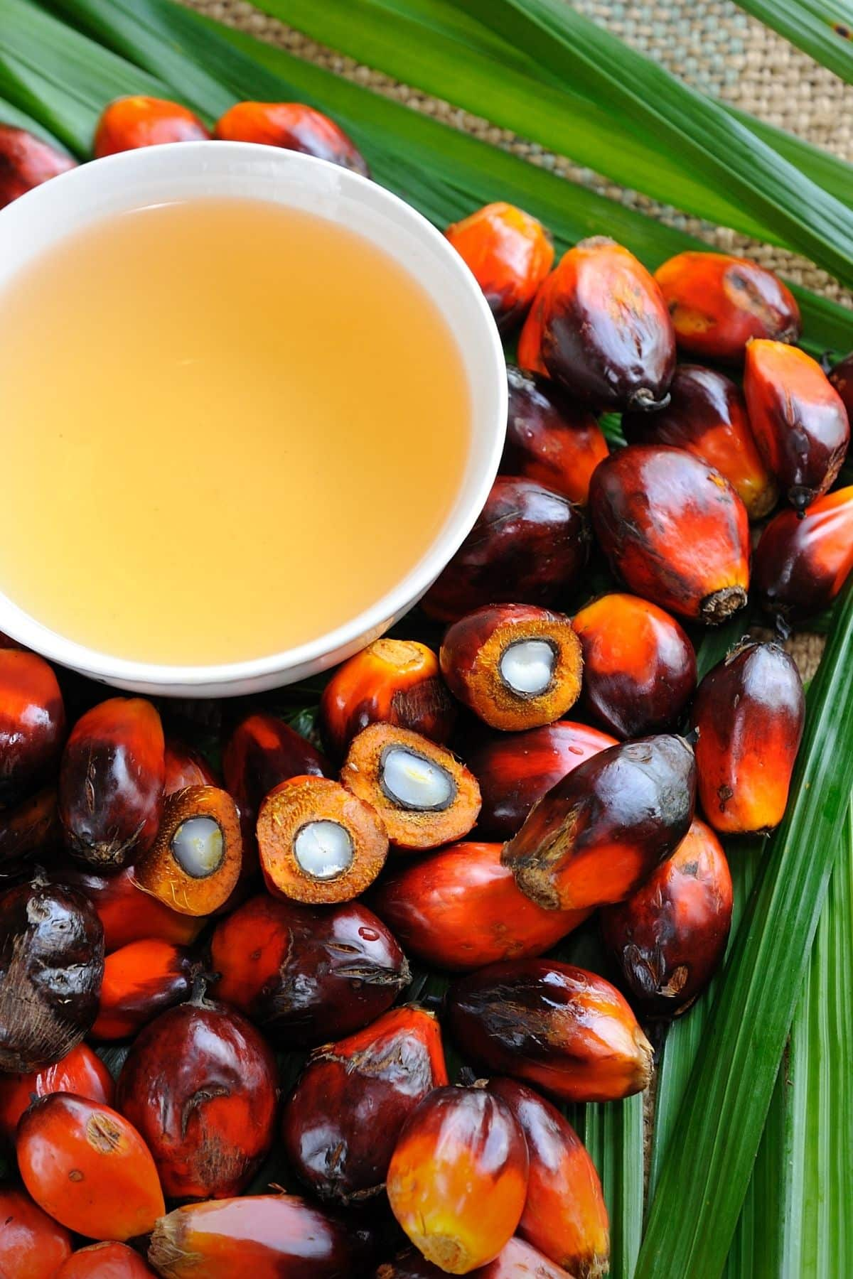red palm oil on a table with fresh palm kernels
