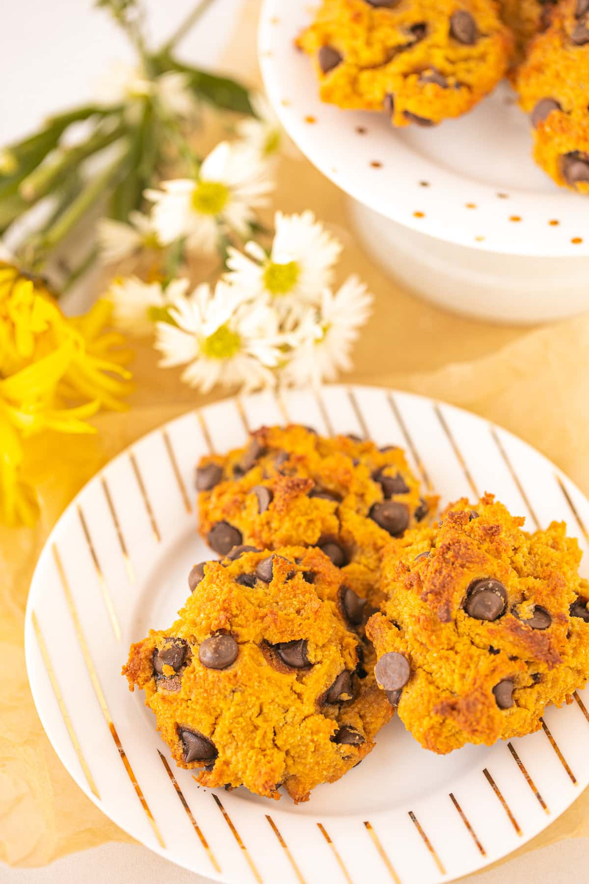 pumpkin chocolate chip cookies from clean eating kitchen