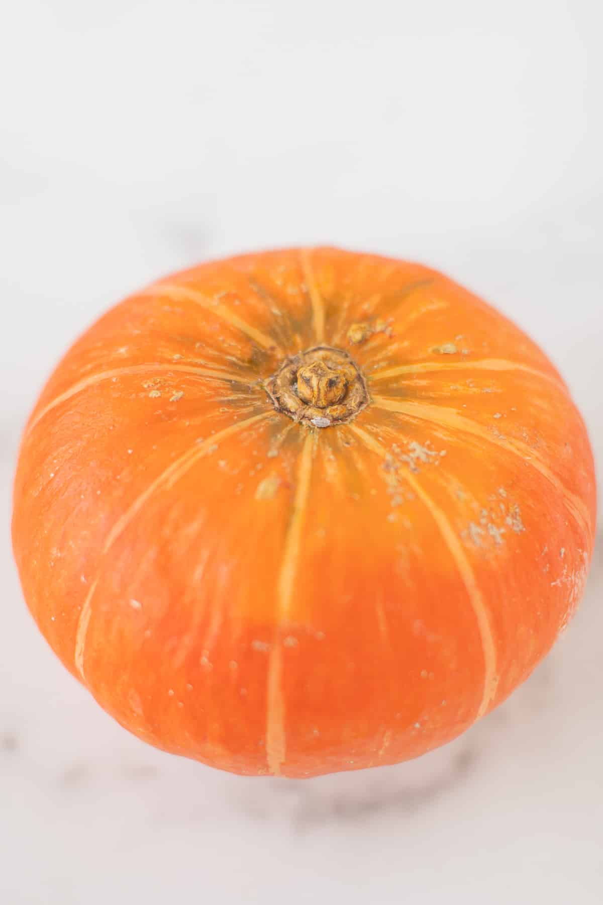 orange kabocha squash