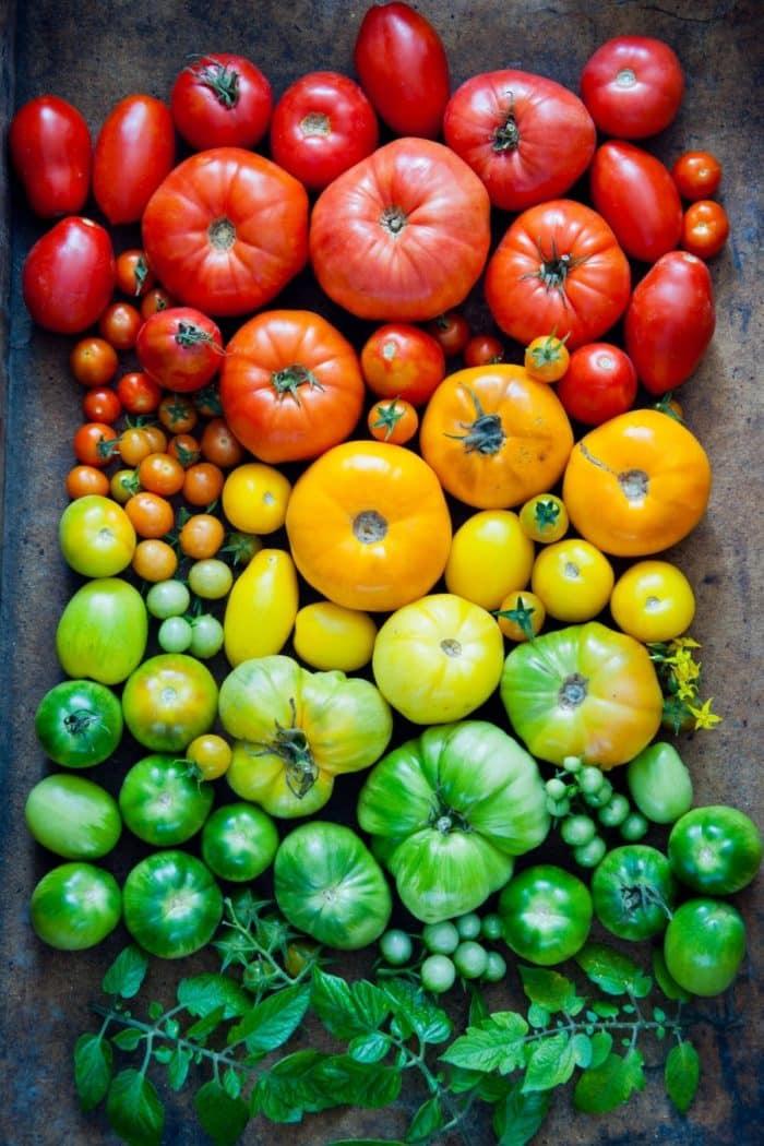 rainbow of fresh foods