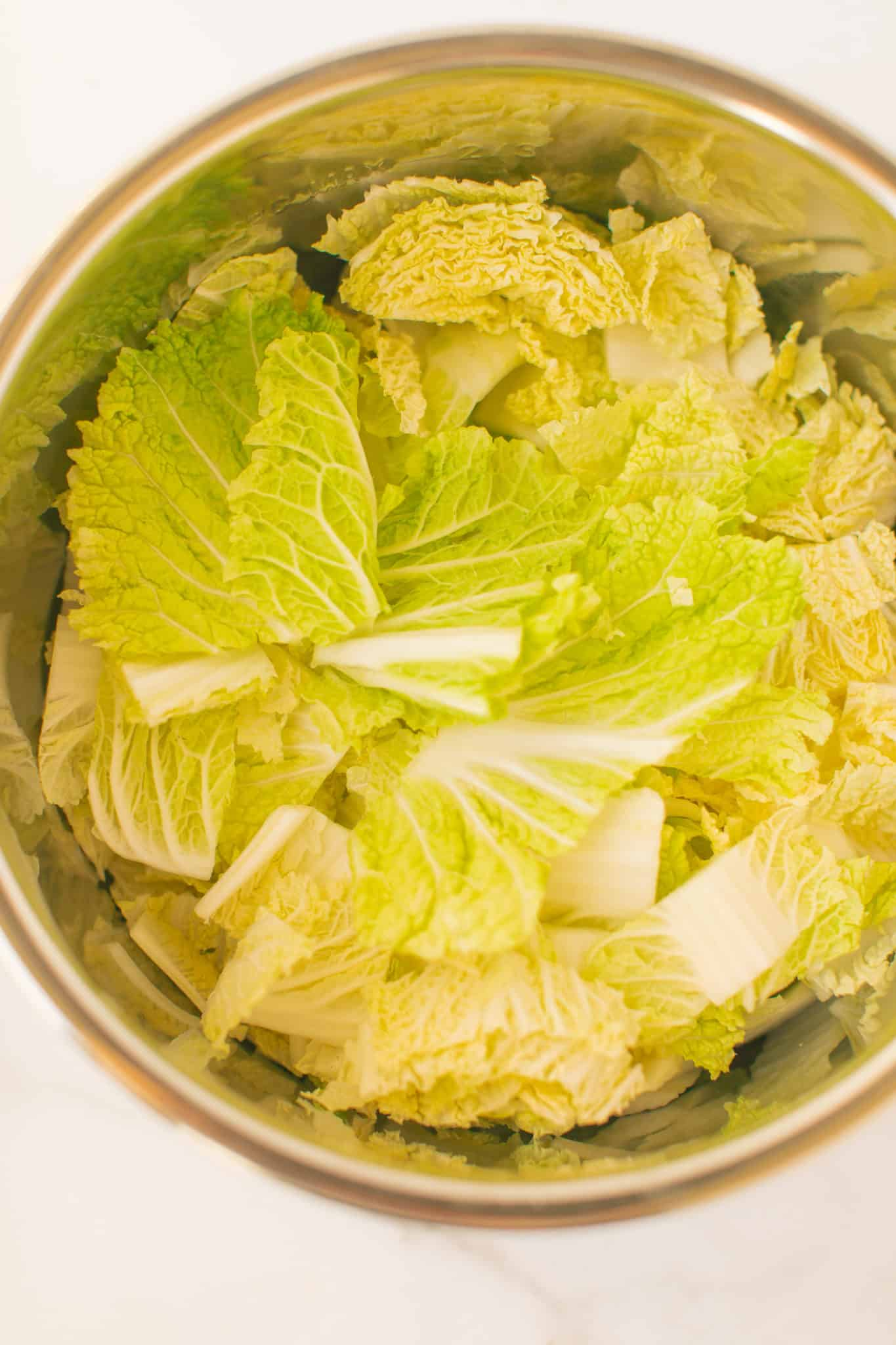 cabbage and sausage ready to be cooked in the instant pot