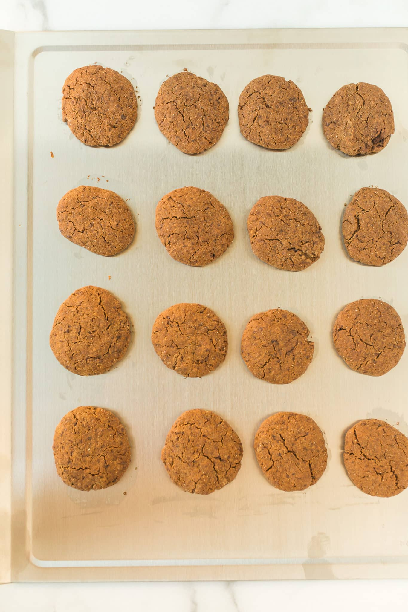 molasses cookies on a stainless steel baking sheet