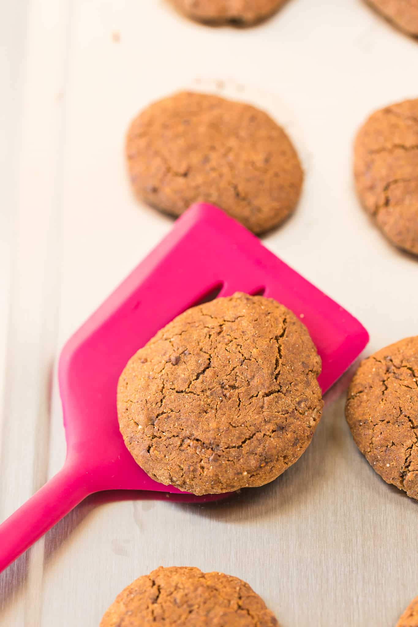 molasses cookies done baking on a baking sheet