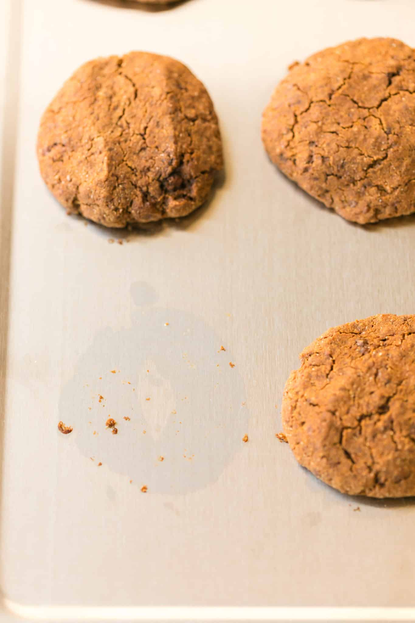 molasses cookies cooling on a stainless steel baking sheet