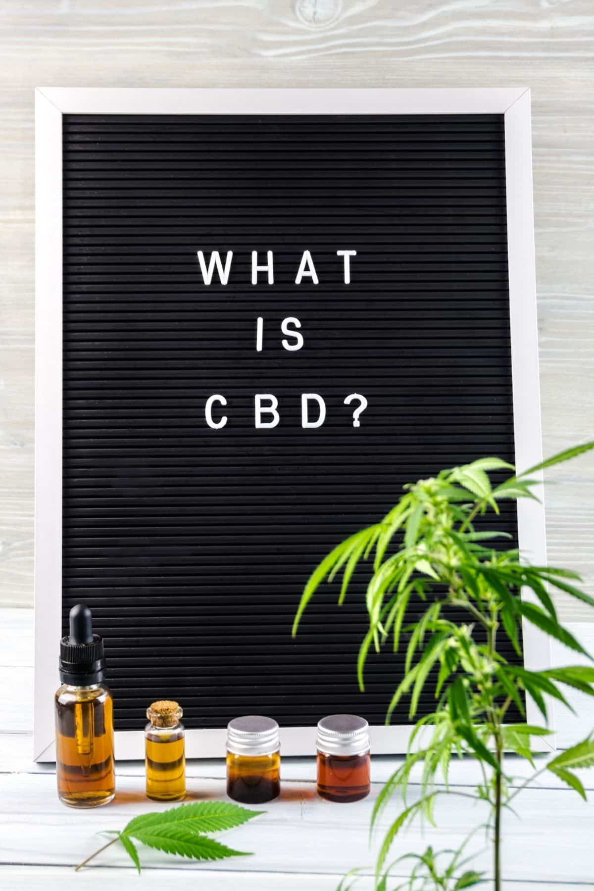 photo with a sign that says what is CBD?