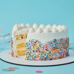 gluten free sprinkle cake