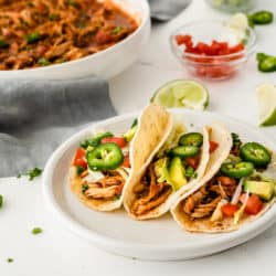 A plate of chicken tinga tacos