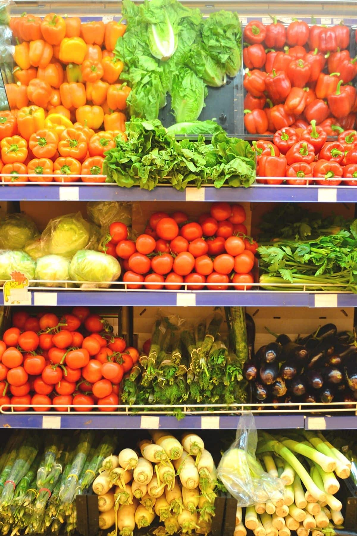 Racks of vegetables at the store
