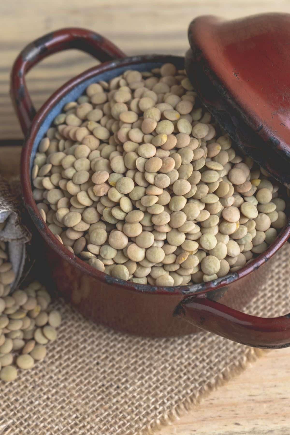 green uncooked lentils in pot