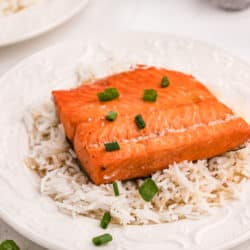 instant pot salmon with rice