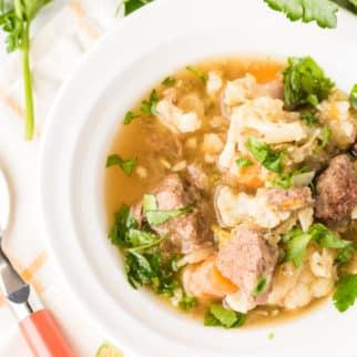 venison beef stew in white bowl