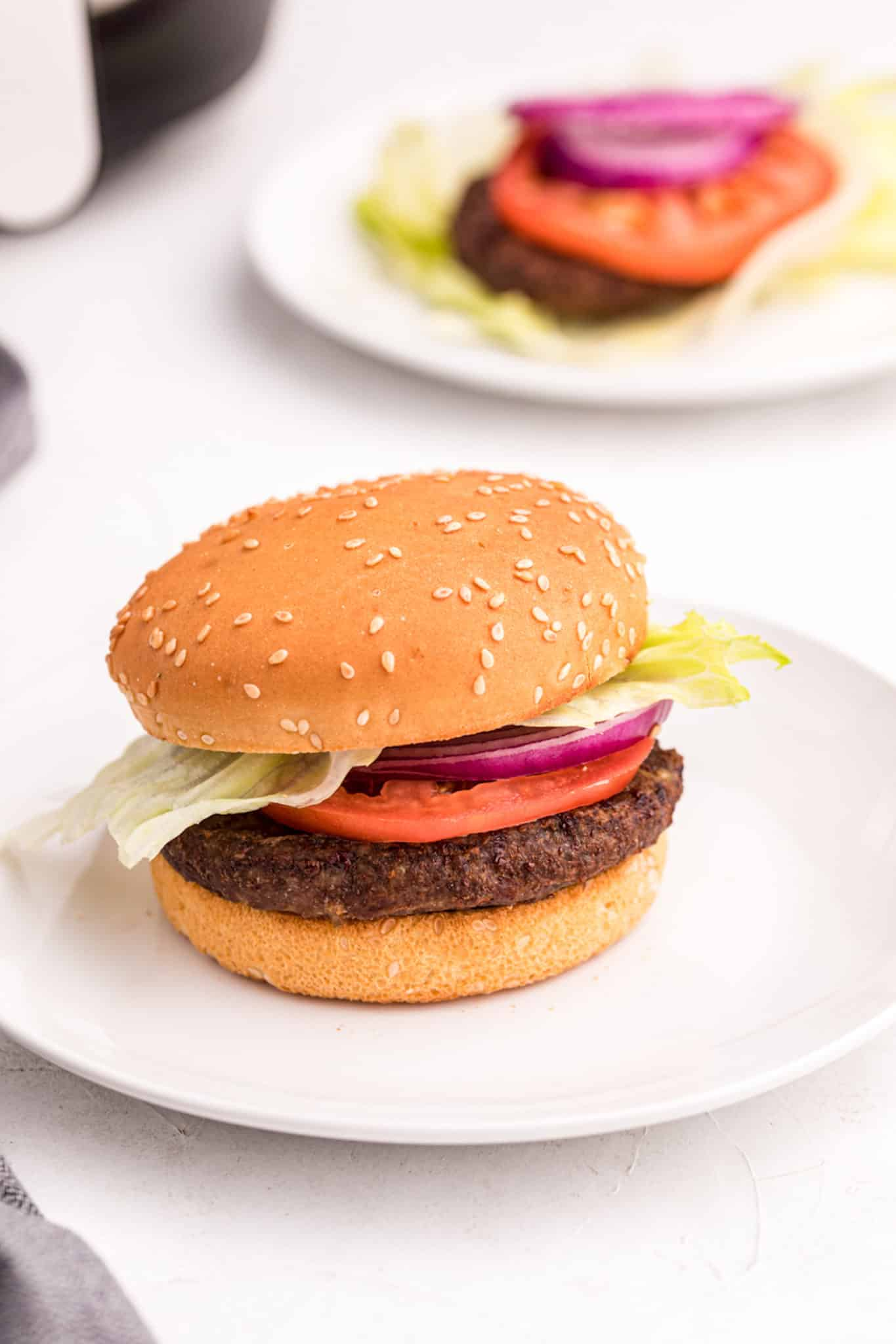 A hamburger with onion and tomato
