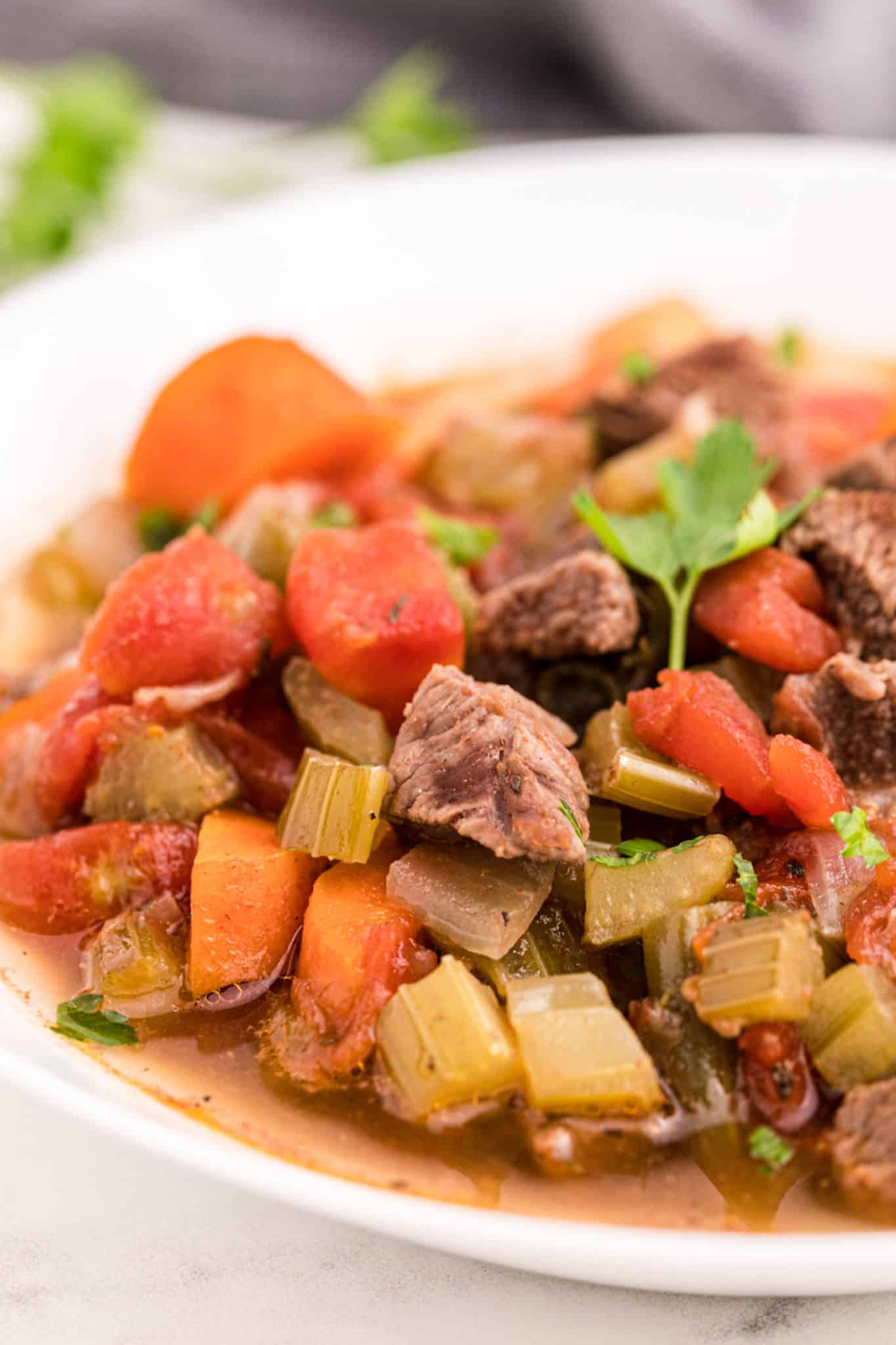 closeup of beef vegetable soup