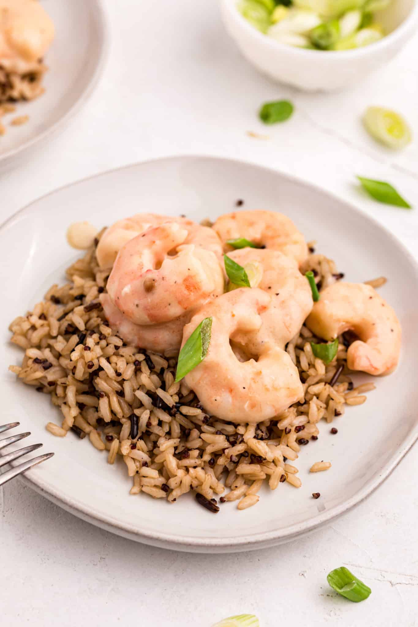 coconut shrimp served over rice