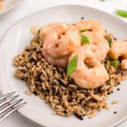 coconut shrimp over rice