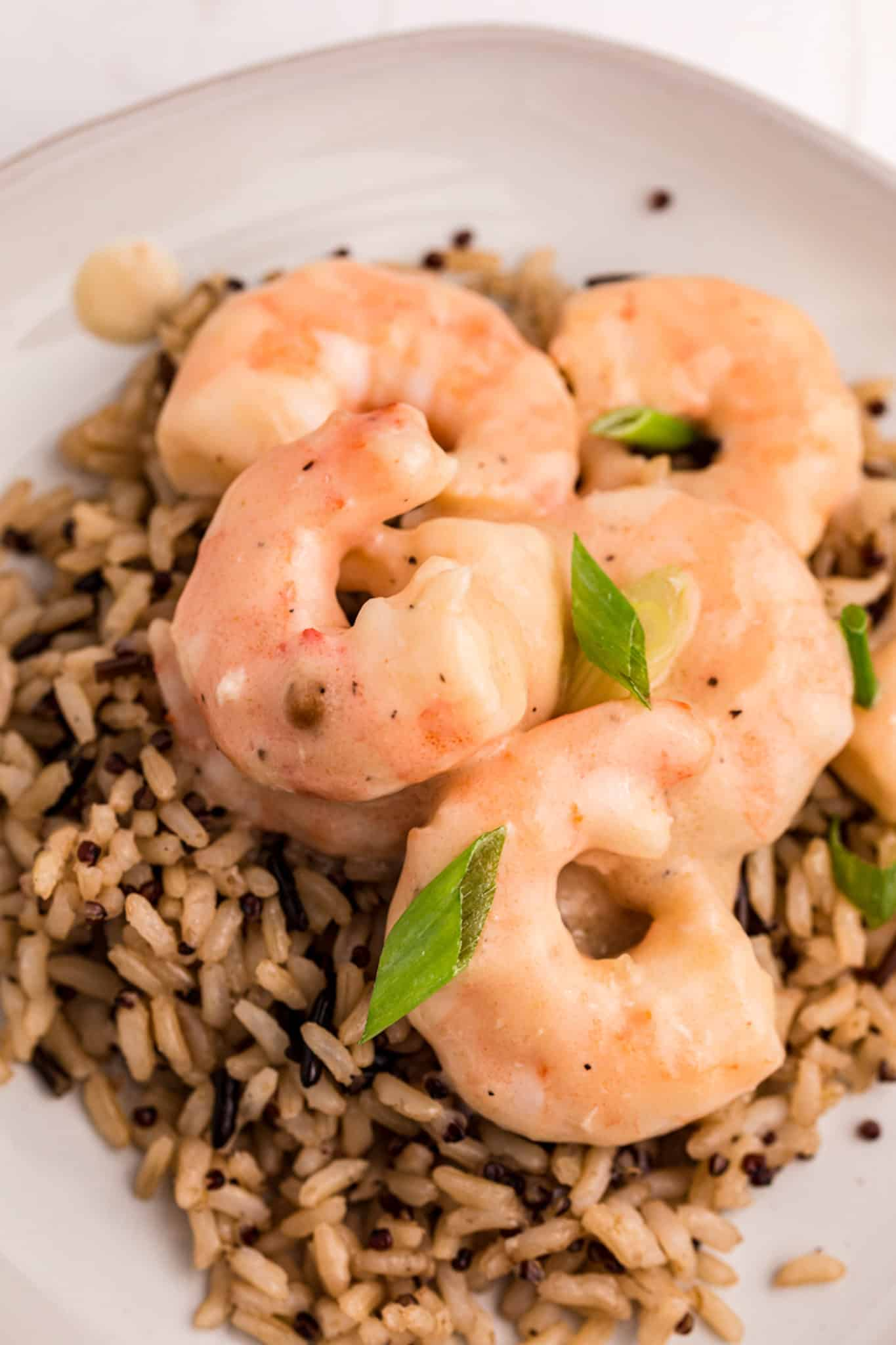 creamy shrimp texture with green onions on top