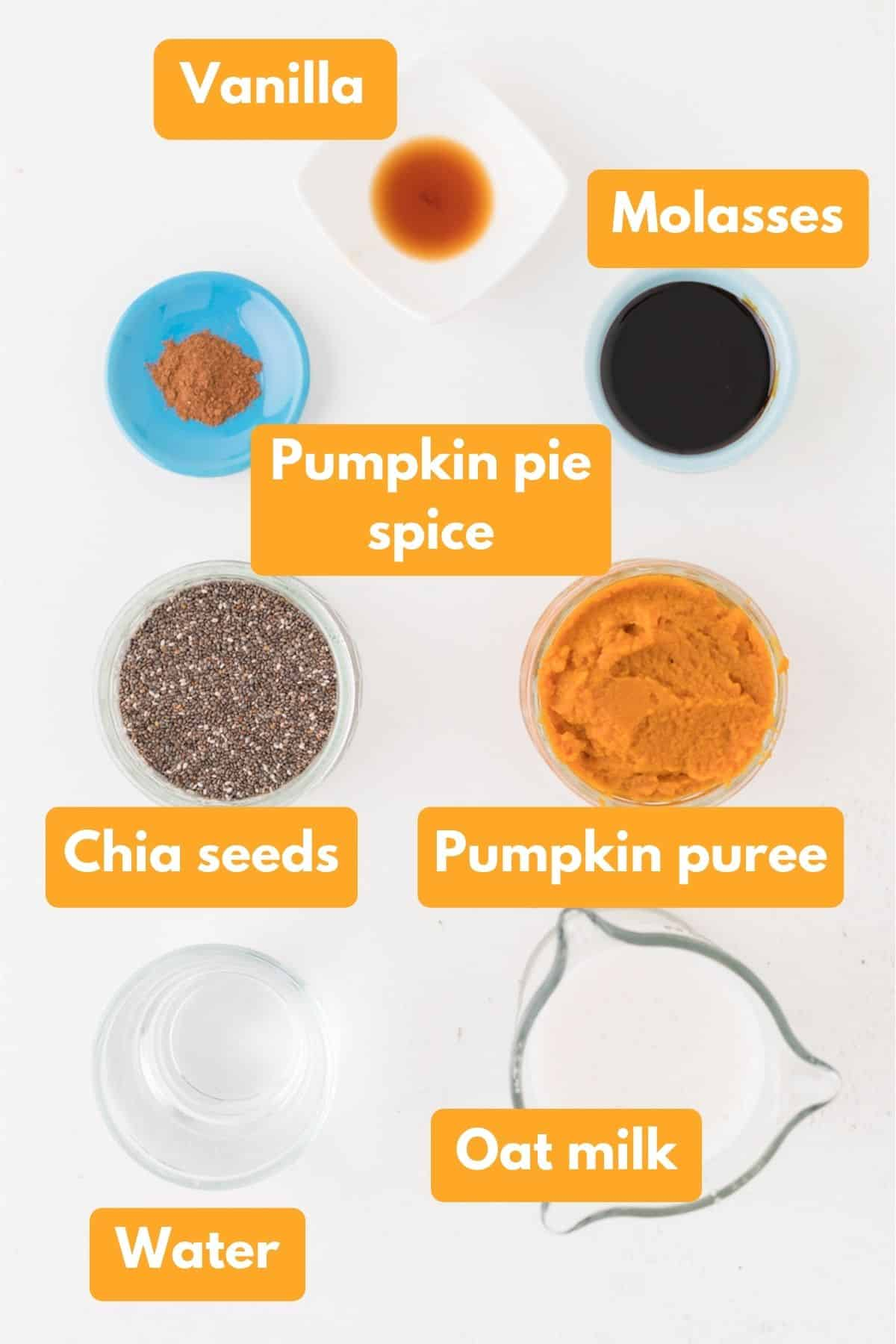 Ingredients for pumpkin spice chia pudding